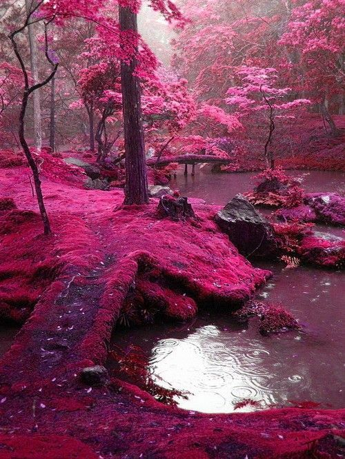 Bridges Park, Ireland
